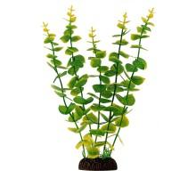 """Растение для аквариума Laguna """"Бакопа"""" желто-зеленая, крупнолистная, 300мм"""