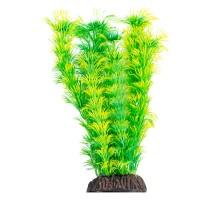 """Растение для аквариума Laguna """"Амбулия"""" жёлто-зеленая, 200мм"""