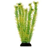 """Растение для аквариума Laguna """"Амбулия"""" жёлто-зеленая, 300мм"""