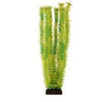 """Растение для аквариума Laguna """"Амбулия"""" жёлто-зеленая, 400мм"""