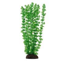 """Растение для аквариума Laguna """"Бакопа"""" зеленая, 300мм"""
