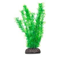 """Растение для аквариума Laguna """"Лигодиум"""" зеленый, 200мм"""