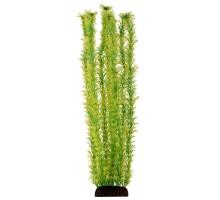 """Растение для аквариума Laguna """"Амбулия"""" жёлто-зеленая, 500мм"""