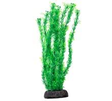 """Растение для аквариума Laguna """"Лигодиум"""" зеленый, 300мм"""