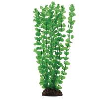 """Растение для аквариума Laguna """"Бакопа"""" зеленая, 500мм"""