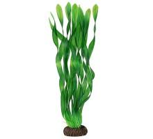 """Растение для аквариума Laguna """"Валлиснерия"""" зеленая, 350мм"""