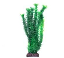 """Растение для аквариума Laguna """"Амбулия"""" зеленая, 300мм"""