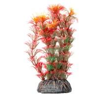 """Растение для аквариума Laguna """"Амбулия"""" красная, 100мм"""