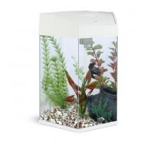 Аквариум AA-Aquariums Hexagon 22л, белый, 330*300*433мм